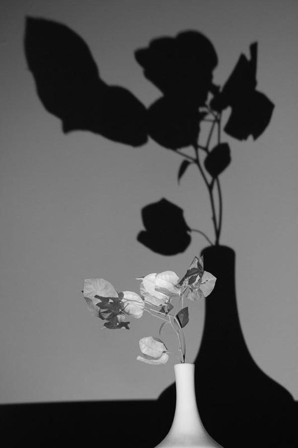 фото Анастасии Зварико;фотокурсы Вадима Качана в Минске; фотошкола; обучение фотографии; фотокурсы при союзе дизайнеров