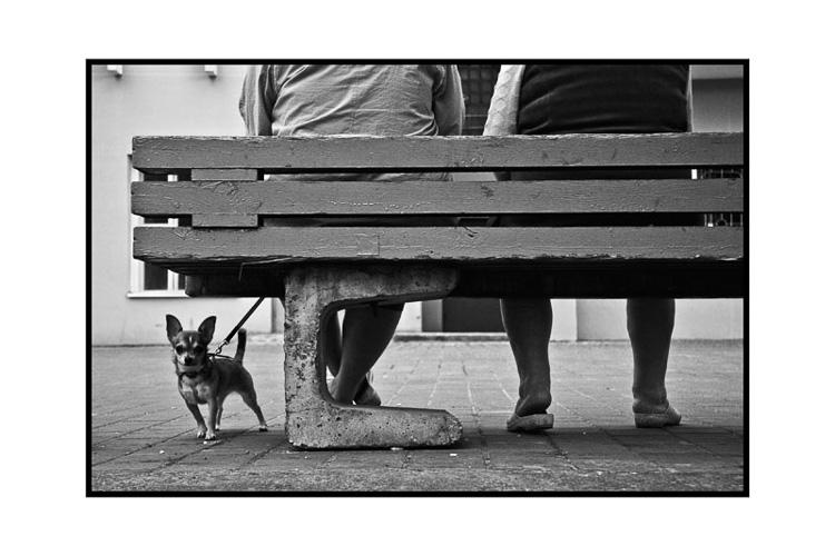 фото Кристины Тарун;фотокурсы Вадима Качана в Минске; фотошкола; обучение фотографии; фотокурсы при союзе дизайнеров