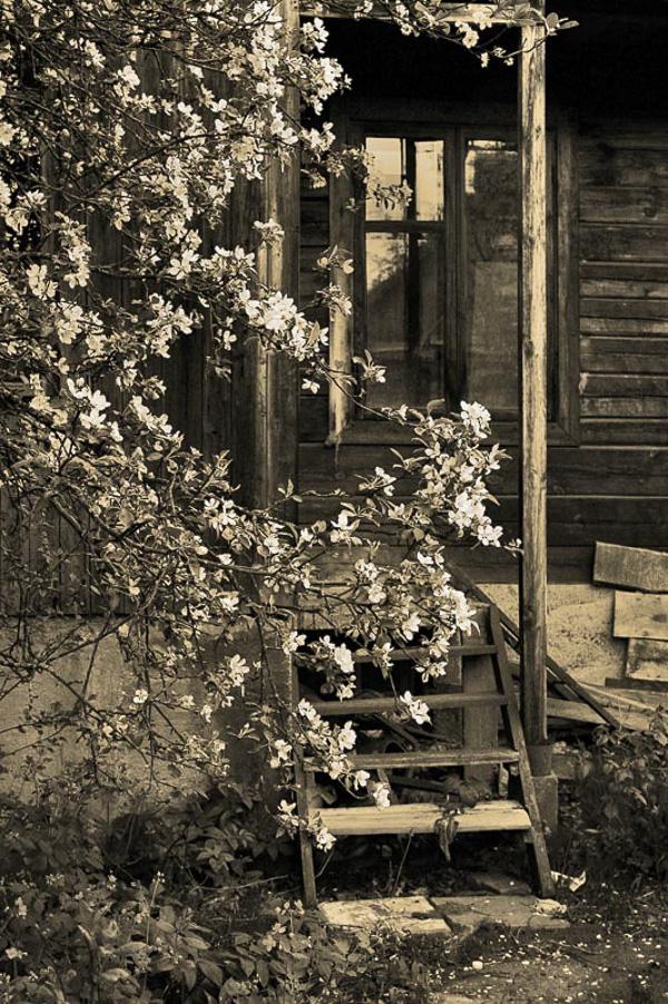 фото Ксении Терехович; фотокусы Вадима Качана в Минске; фотошкола; обучение фотографии; фотокурсы при союзе дизайнеров