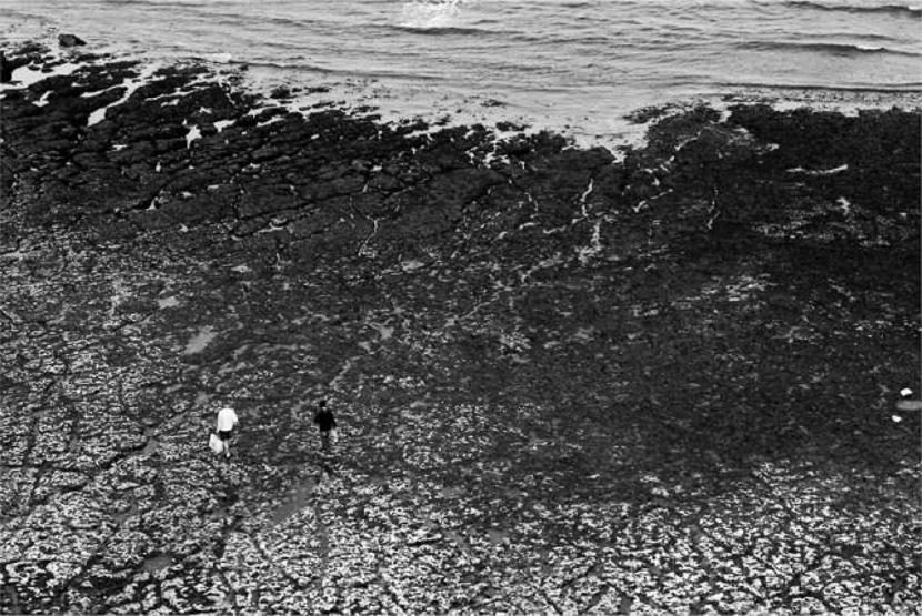 фото Николая Кутяна;фотокурсы Вадима Качана в Минске; фотошкола; обучение фотографии; фотокурсы при союзе дизайнеров