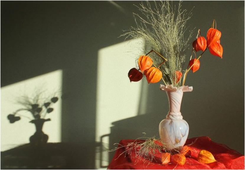фото Ноны Белоножко;фотокурсы Вадима Качана в Минске; фотошкола; обучение фотографии; фотокурсы при союзе дизайнеров