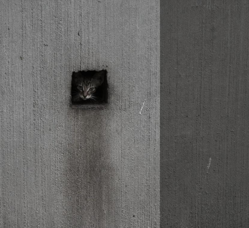 фото Павла Нечаева; фотокурсы Вадима Качана в Минске; фотошкола; обучение фотографии; фотокурсы при союзе дизайнеров