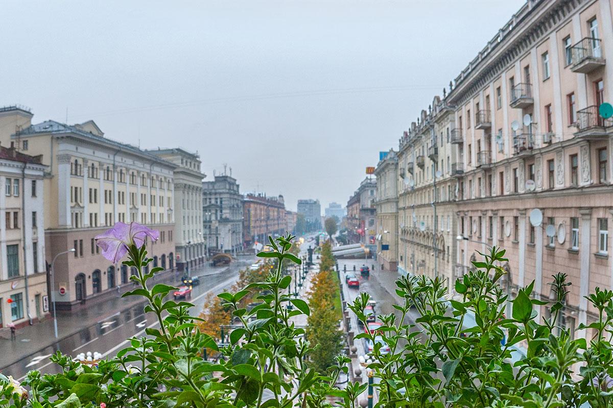Вид из окна студии; фотокурсы Вадима Качана в Минске; фотошкола; обучение фотографии; фотокурсы при союзе дизайнеров